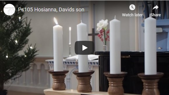 Ps105 Hosianna, Davids son