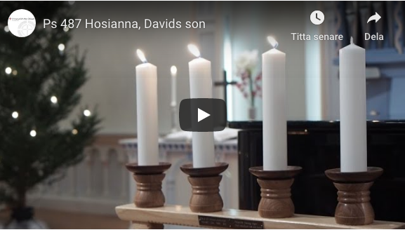 Ps 487 Hosianna, Davids son